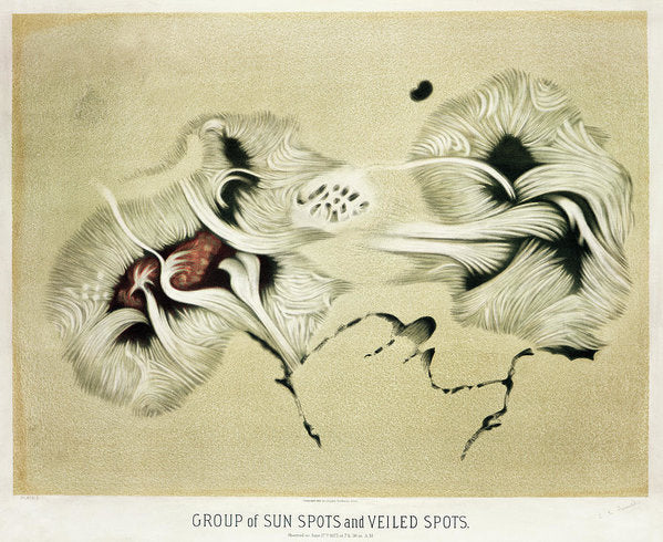 Antique Illustration of Sun Spots, 1881 - Art Print from Wallasso - The Wall Art Superstore