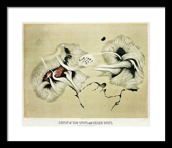 Antique Illustration of Sun Spots, 1881 - Framed Print from Wallasso - The Wall Art Superstore