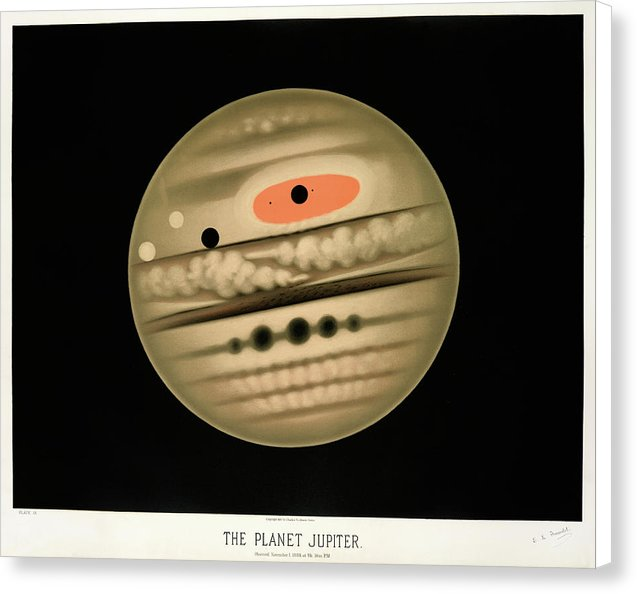 Antique Illustration of The Planet Jupiter, 1881 - Canvas Print from Wallasso - The Wall Art Superstore