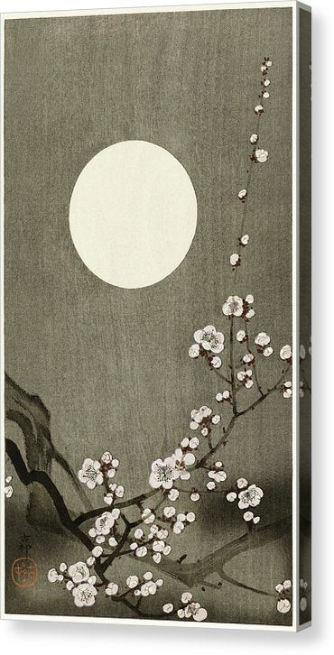 Antique Japanese Blooming Plum Blossom, 1900 - Canvas Print from Wallasso - The Wall Art Superstore