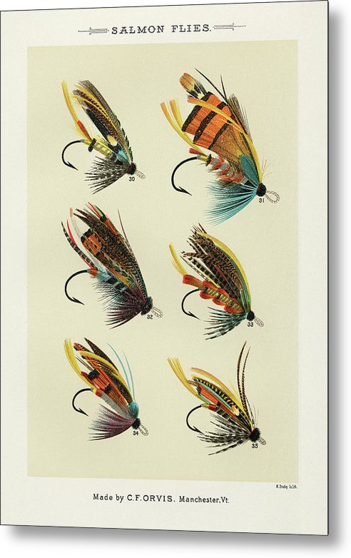 Antique Salmon Flies Fishing Lure Illustration, 1892 - Metal Print from Wallasso - The Wall Art Superstore
