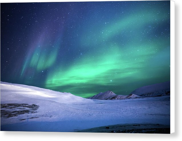 Aurora Borealis Over Snow - Canvas Print from Wallasso - The Wall Art Superstore