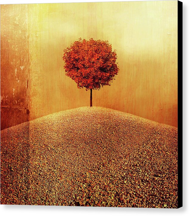 Autumnal Orange Tree On Hill - Canvas Print from Wallasso - The Wall Art Superstore