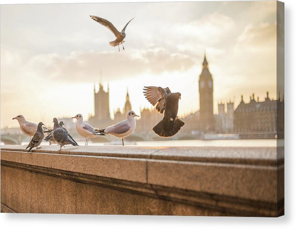 Beautiful Birds With Big Ben London - Canvas Print from Wallasso - The Wall Art Superstore