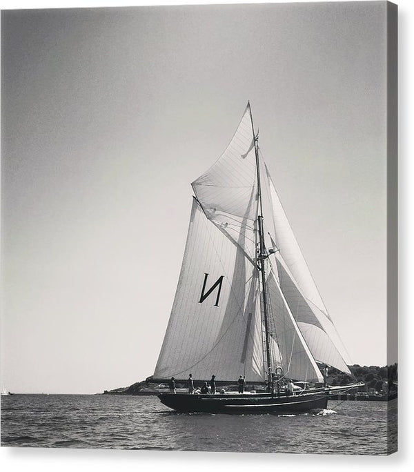 Black and White Sailboat - Canvas Print from Wallasso - The Wall Art Superstore