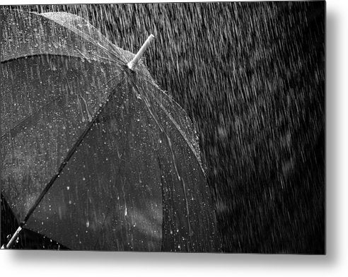 Black and White Umbrella In The Rain - Metal Print from Wallasso - The Wall Art Superstore