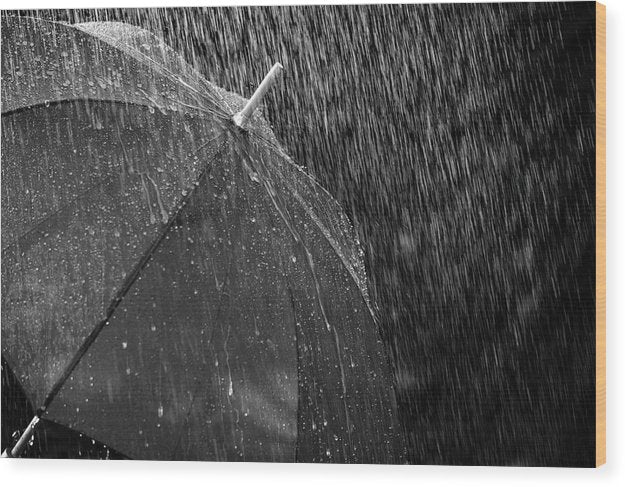 Black and White Umbrella In The Rain - Wood Print from Wallasso - The Wall Art Superstore