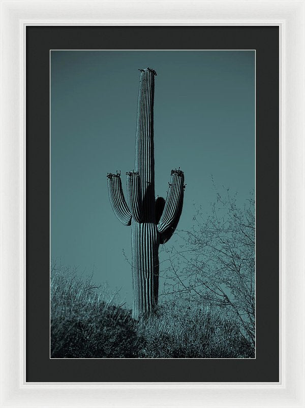Blue Tone Saguaro Cactus - Framed Print from Wallasso - The Wall Art Superstore