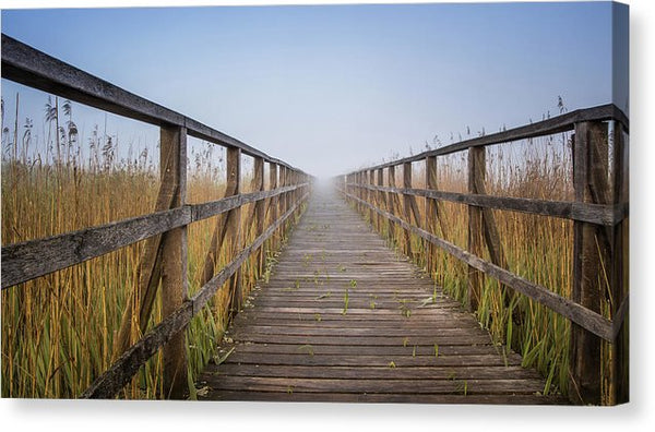 Boardwalk Leading Through Tall Grass - Canvas Print from Wallasso - The Wall Art Superstore