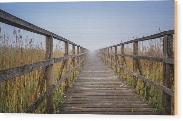 Boardwalk Leading Through Tall Grass - Wood Print from Wallasso - The Wall Art Superstore