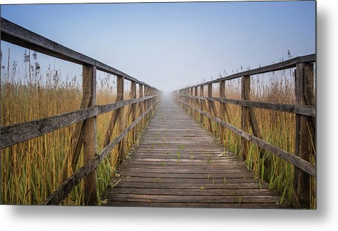 Boardwalk Leading Through Tall Grass - Metal Print from Wallasso - The Wall Art Superstore