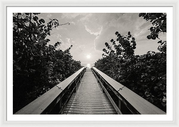 Boardwalk Leading To Beach, Sepia - Framed Print from Wallasso - The Wall Art Superstore
