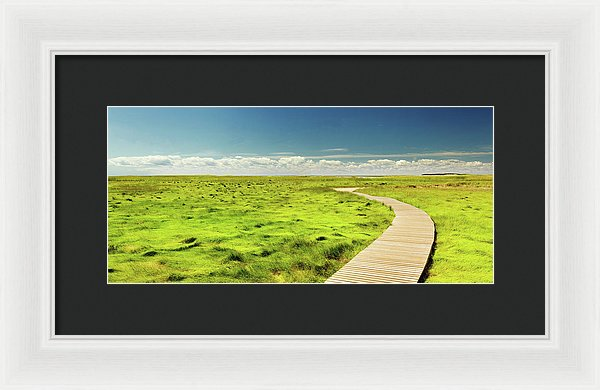 Boardwalk Through Vibrant Green Grass Pasture - Framed Print from Wallasso - The Wall Art Superstore