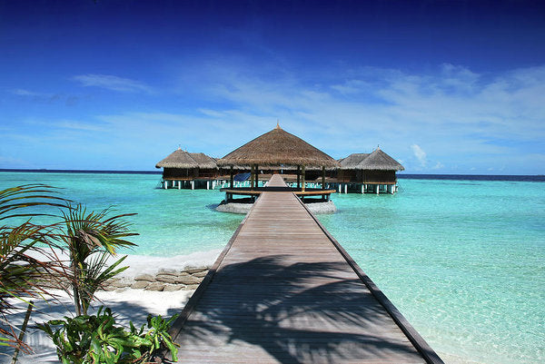 Boardwalk To Tropical Huts Over Crystal Blue Water - Art Print from Wallasso - The Wall Art Superstore