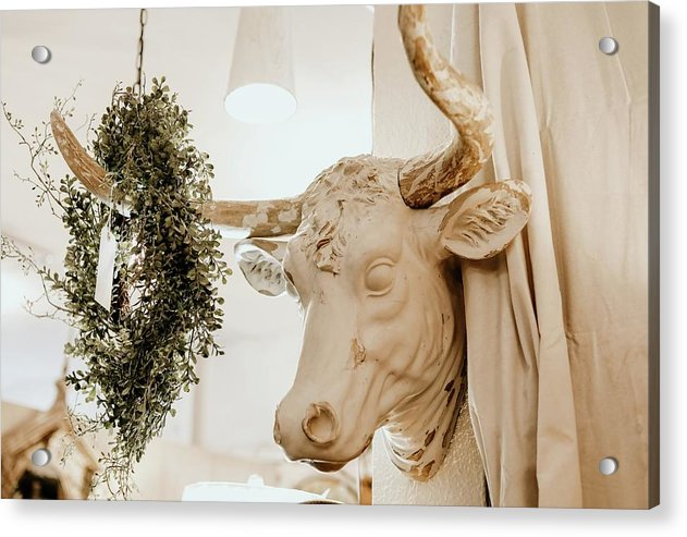 Boho Cow Head Sculpture With Wreath - Acrylic Print from Wallasso - The Wall Art Superstore