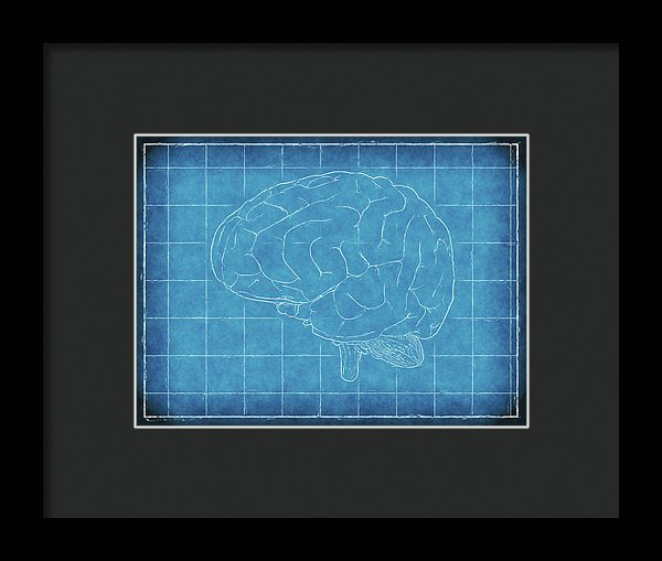 Brain Blueprint - Framed Print from Wallasso - The Wall Art Superstore