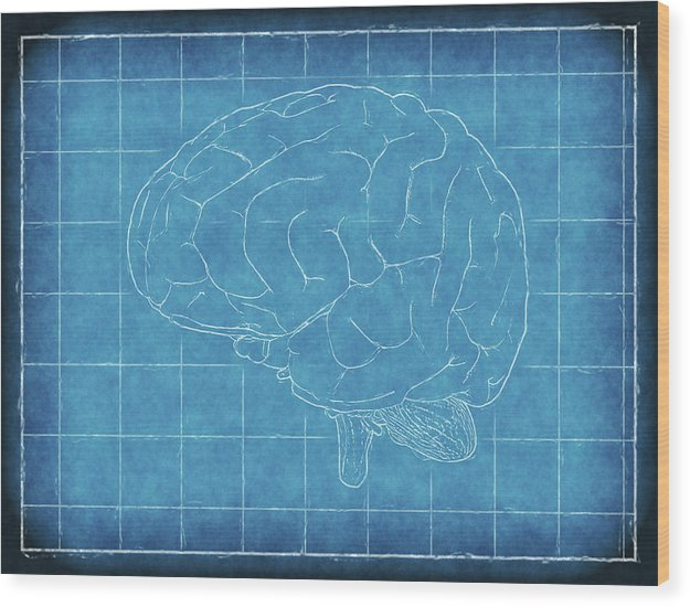 Brain Blueprint - Wood Print from Wallasso - The Wall Art Superstore