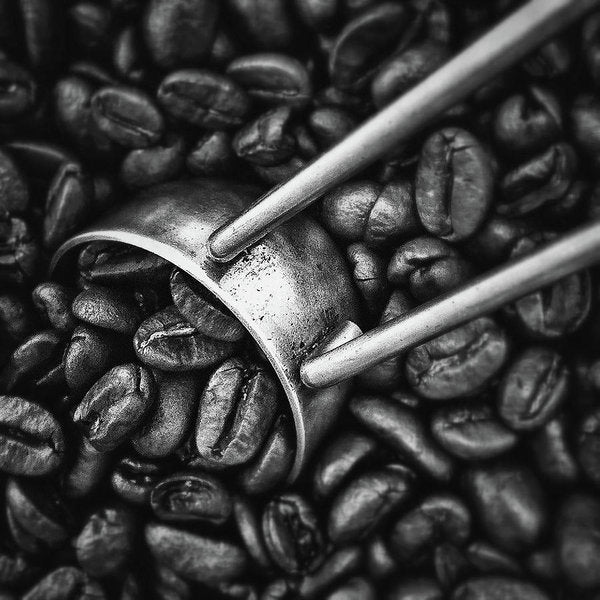 Coffee Beans, Black and White - Art Print from Wallasso - The Wall Art Superstore