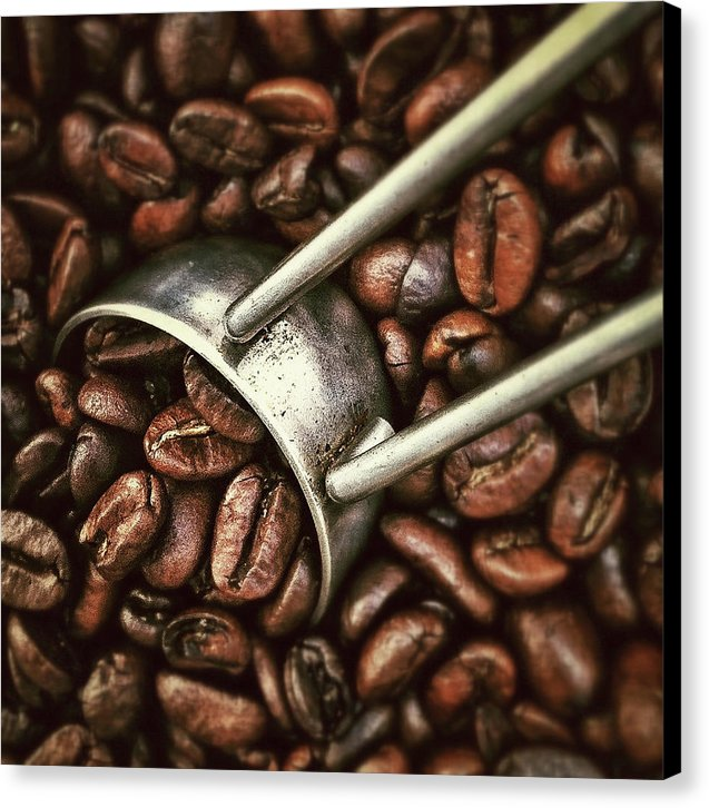 Coffee Beans - Canvas Print from Wallasso - The Wall Art Superstore