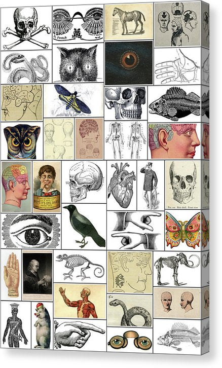 Collage of Macabre Vintage Art - Canvas Print from Wallasso - The Wall Art Superstore