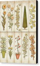Collage of Vertical Flower Cutouts - Canvas Print from Wallasso - The Wall Art Superstore