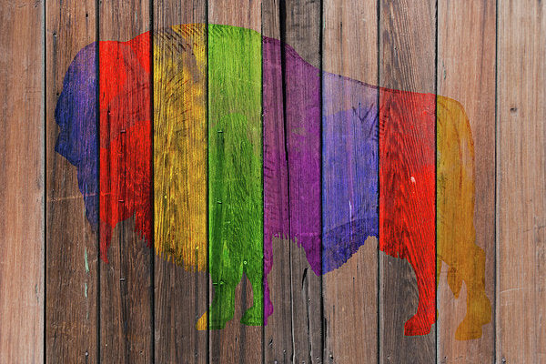 Colorful Buffalo Painted On Wood Fence, 2 of 2 Set - Art Print from Wallasso - The Wall Art Superstore