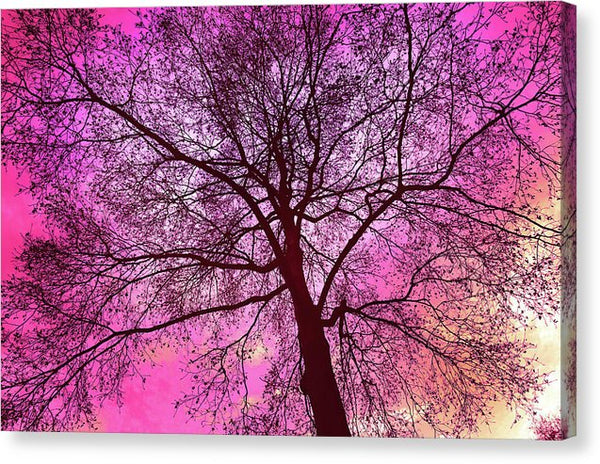 Colorful Pink Tree - Canvas Print from Wallasso - The Wall Art Superstore