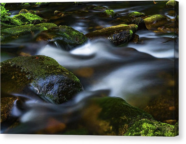 Creek Waterfall With Mossy Rocks - Canvas Print from Wallasso - The Wall Art Superstore