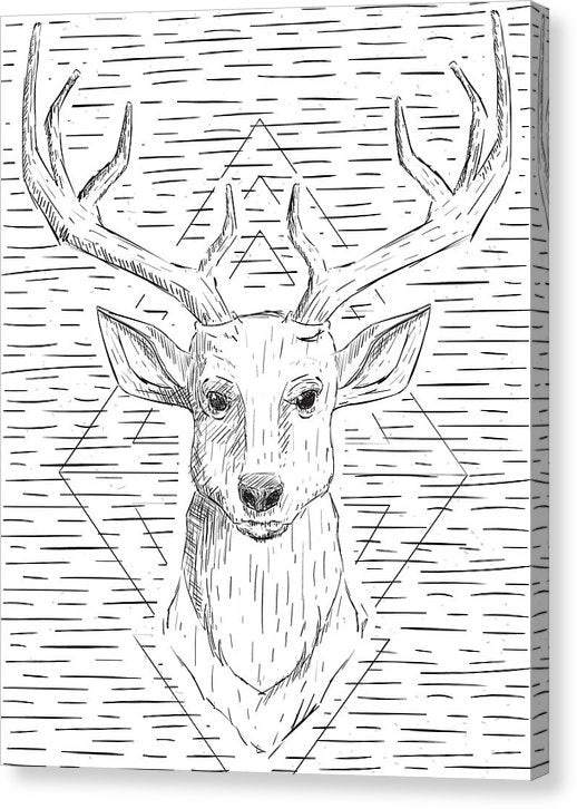 Deer Head With Antlers Line Drawing - Canvas Print from Wallasso - The Wall Art Superstore