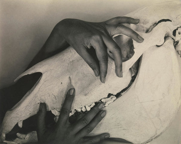 Female Hands Caressing Horse Skull, 1931 - Art Print from Wallasso - The Wall Art Superstore