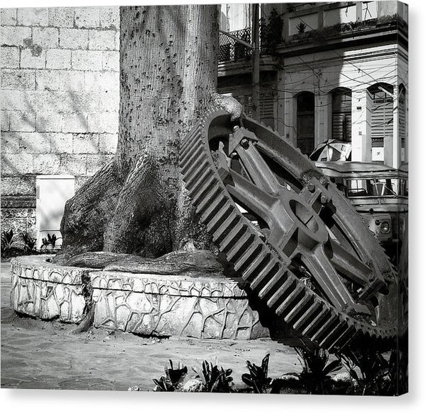 Giant Gear Leaning On Tree - Canvas Print from Wallasso - The Wall Art Superstore
