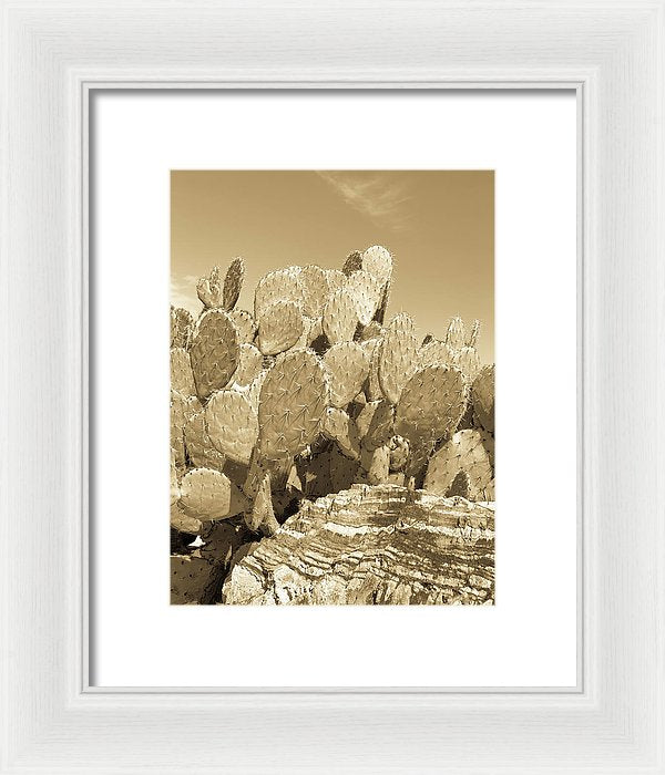 Gold Tone Prickly Pear Paddle Cactus - Framed Print from Wallasso - The Wall Art Superstore