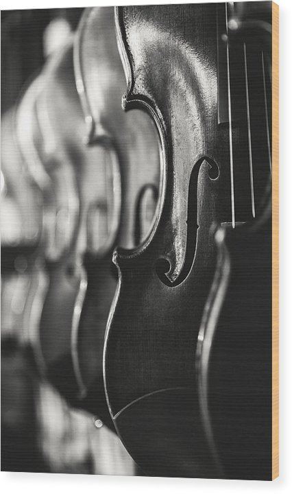 Hanging Violins - Wood Print from Wallasso - The Wall Art Superstore