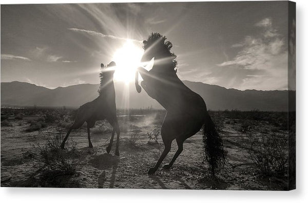Horse Rearing Up Silhouette - Canvas Print from Wallasso - The Wall Art Superstore