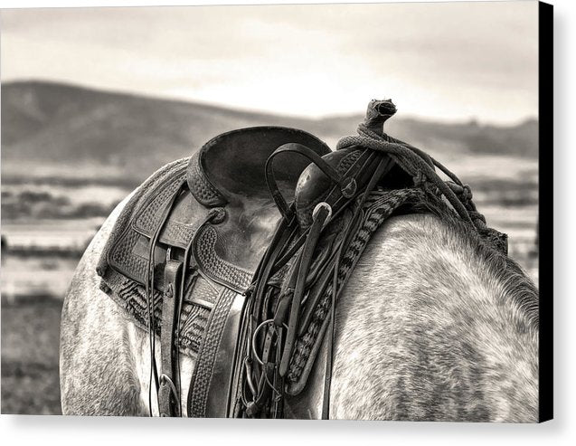 Horse With Saddle, Sepia - Canvas Print from Wallasso - The Wall Art Superstore
