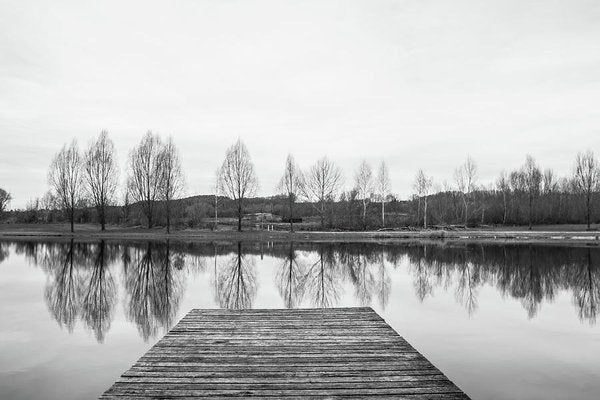 Lakeside Boardwalk With Trees Reflected In Water - Art Print from Wallasso - The Wall Art Superstore