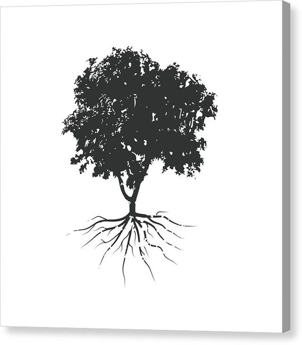 Minimalist Tree Root Illustration - Canvas Print from Wallasso - The Wall Art Superstore