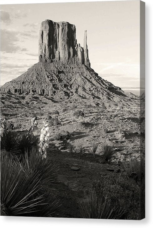 Monument Valley Mesa - Canvas Print from Wallasso - The Wall Art Superstore