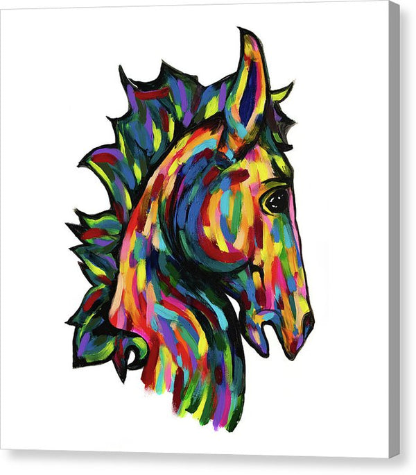Painted Pony (Square) by Jessica Contreras - Canvas Print from Wallasso - The Wall Art Superstore