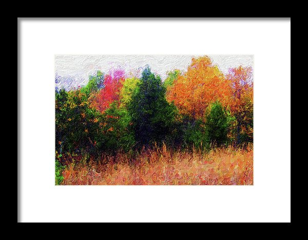 Painting of Colorful Tree Line - Framed Print from Wallasso - The Wall Art Superstore