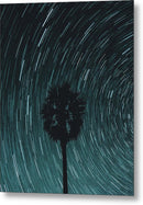 Palm Tree With Star Trails - Metal Print from Wallasso - The Wall Art Superstore