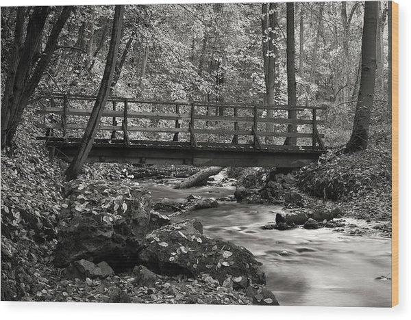 Peaceful Pedestrian Bridge In Forest - Wood Print from Wallasso - The Wall Art Superstore