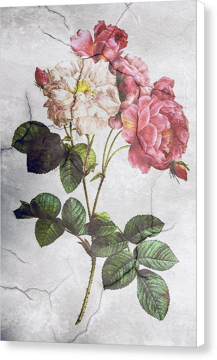 Peony Flower Wall Texture Decoupage Design - Canvas Print from Wallasso - The Wall Art Superstore