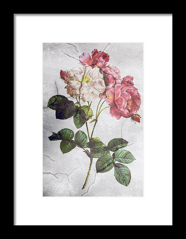 Peony Flower Wall Texture Decoupage Design - Framed Print from Wallasso - The Wall Art Superstore