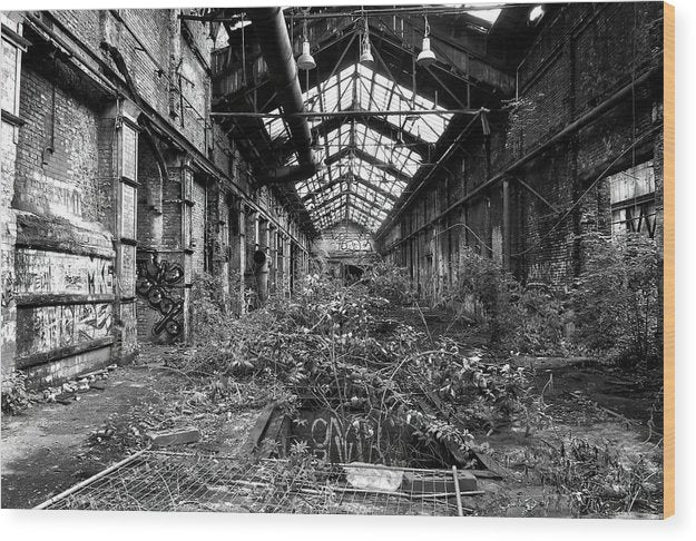 Plant Overgrowth In Abandoned Factory - Wood Print from Wallasso - The Wall Art Superstore