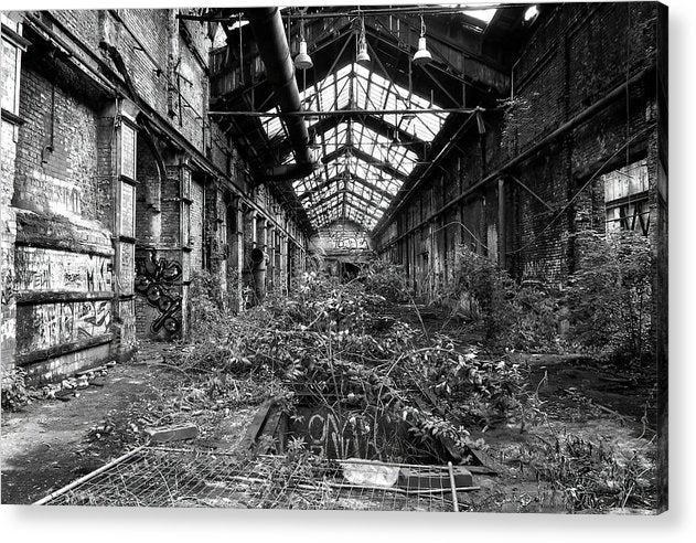 Plant Overgrowth In Abandoned Factory - Acrylic Print from Wallasso - The Wall Art Superstore