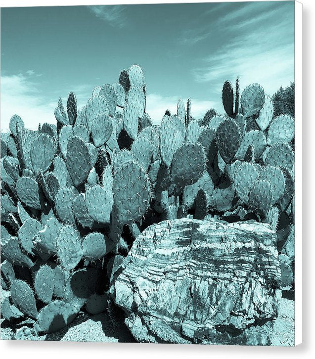 Prickly Pear Paddle Cactus, Blue Tone - Canvas Print from Wallasso - The Wall Art Superstore