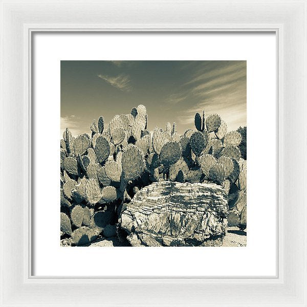 Prickly Pear Paddle Cactus, Sepia - Framed Print from Wallasso - The Wall Art Superstore