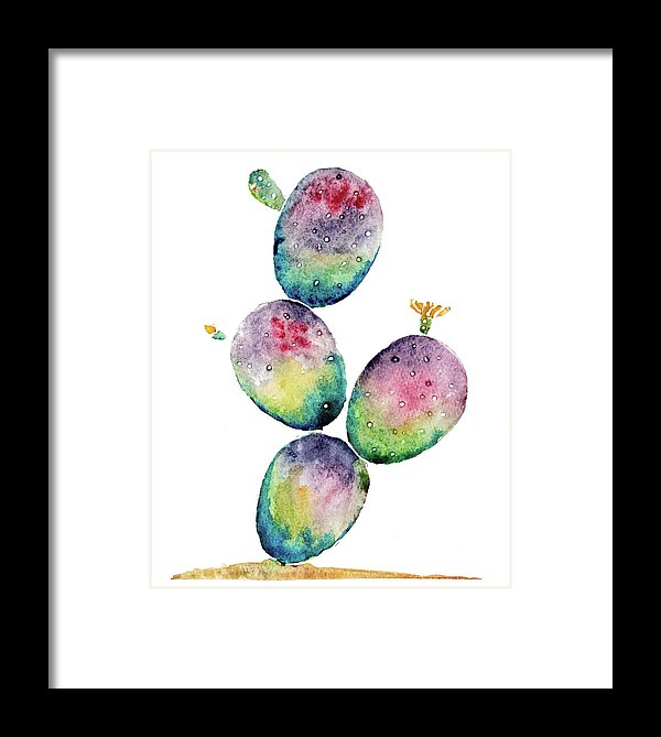 Rainbow Paddle Cactus By Jessica Contreras - Framed Print from Wallasso - The Wall Art Superstore