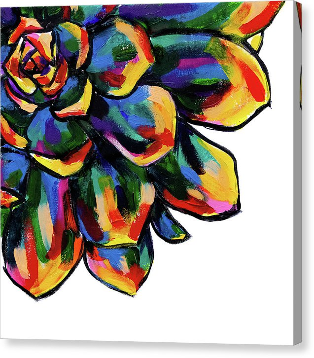 Rainbow Succulent by Jessica Contreras - Canvas Print from Wallasso - The Wall Art Superstore
